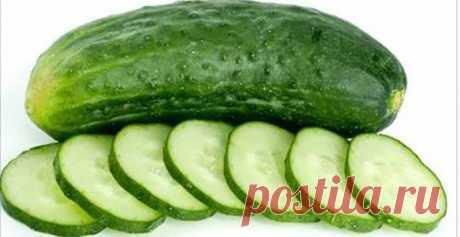 Ешьте огурец - 13 отличных преимуществ для вашего здоровья! - Советы для тебя