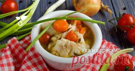Уха из трески Уха домашняя – густой рыбный суп, с картофелем, помидорами и луком. Рецепт ухи из трески один из самых вкусных рецептов первого блюда из рыбы. Лучше только уха на костре, но для этого нужно быть рыбаком или хотя бы приближенным к нему человеком.