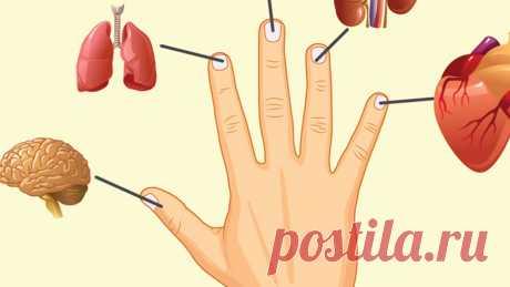 Искусство исцеления Джин Шин Джитсу: японская техника лечения болезней путем воздействия на пальцы рук Джин Шин Джитсу – старинная японская методика, основанная на массажном воздействии на определенные точки на теле.