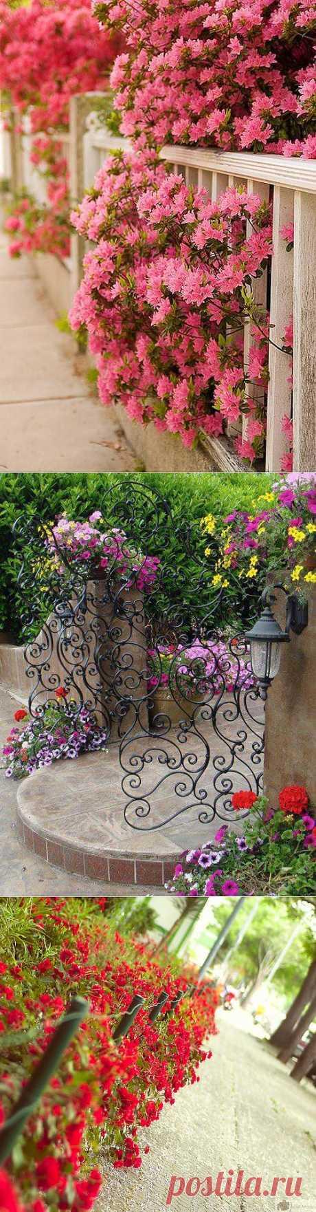 Неописуемая красота: креатифф-подход к заборам и калиткам на садовом участке.
