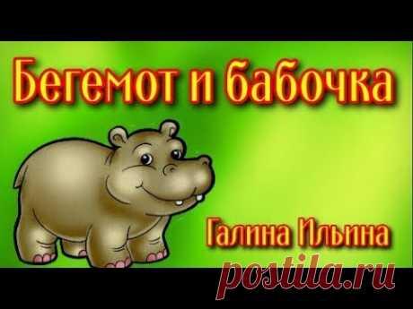Бегемот и бабочка Детские стихи - YouTube