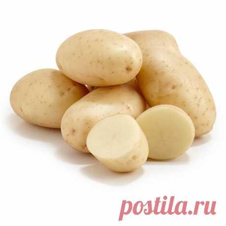 Картинки картошки (38 фото) ⭐ Забавник