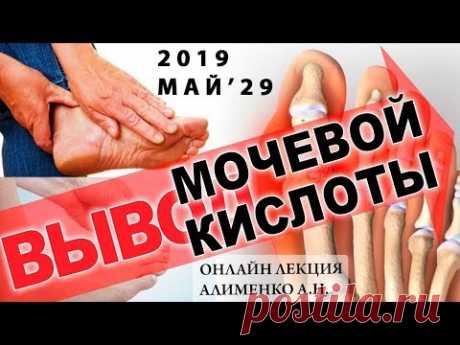 Вывод мочевой кислоты, Ксенобиотики и Янтарная кислота. Алименко А.Н. (29.05.2019)