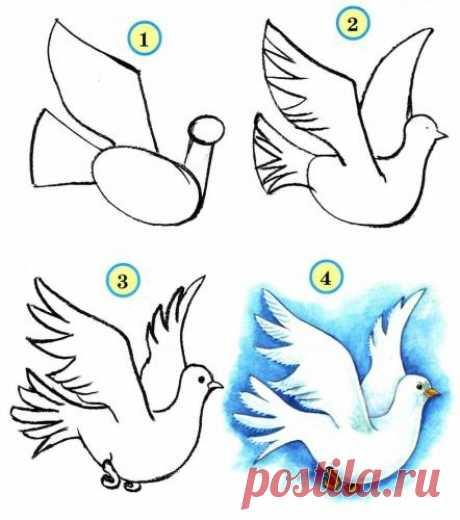 Рисуем птиц - Поделки с детьми | Деткиподелки
