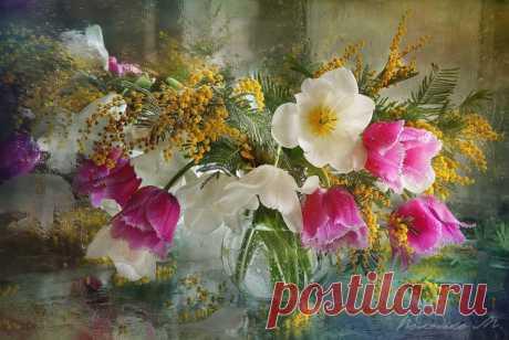 Фотография Первый день Весны из раздела натюрморт №6885605 - фото.сайт - Photosight.ru