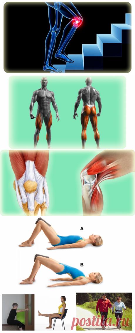 О причинах боли в коленях при подъеме и спуске по лестнице. Совет ортопеда!   Сам Себе Ортопед. Спб.   Яндекс Дзен