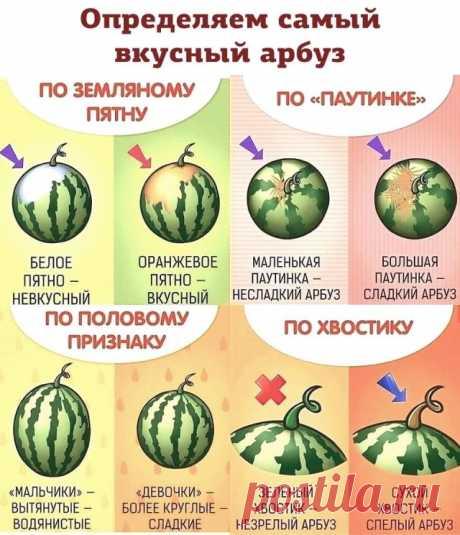 Как выбрать арбуз? 10 проверенных лайфхаков. Покупаем арбузы правильно!
