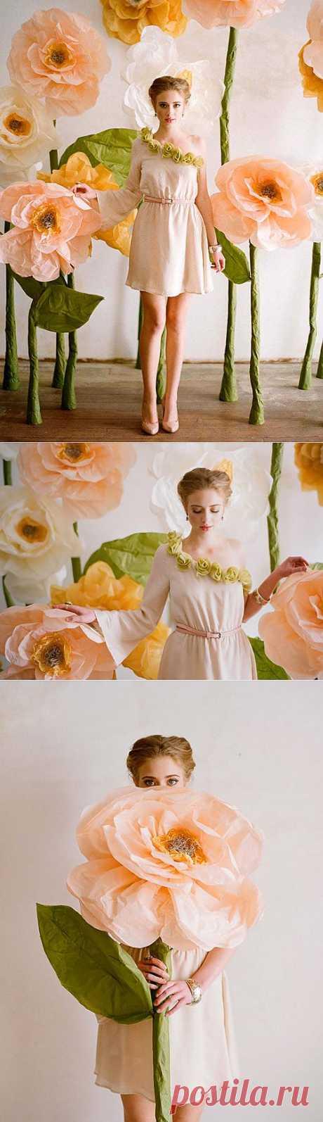 Алиса в сказочном палисаднике (плюс МК) / Фото (идеи съемок) / Модный сайт о стильной переделке одежды и интерьера