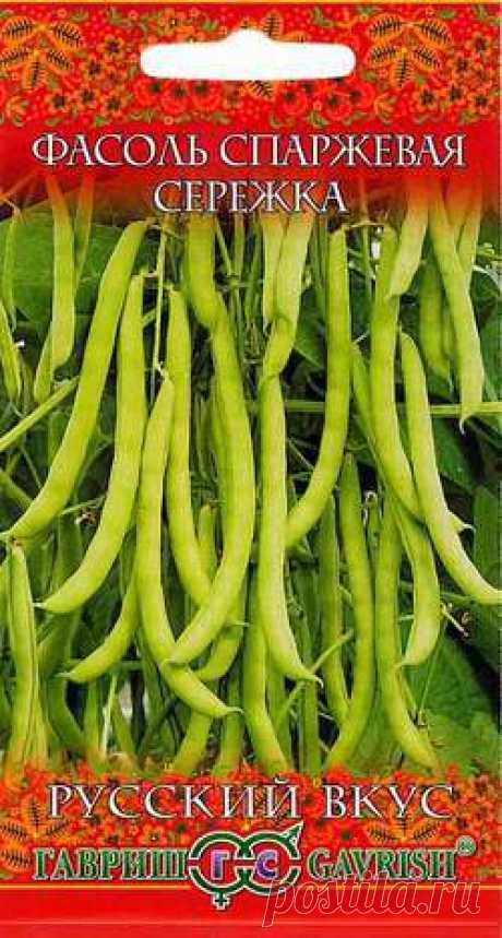Семена. Фасоль Сережка (вес: 5,0 г)  Среднеспелая (55 дней от полных всходов до технической спелости) вьющаяся спаржевая фасоль, с высокими питательными и вкусовыми качествами.