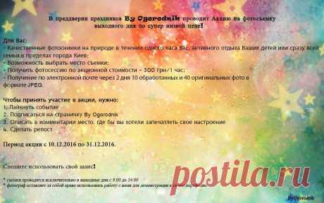 "By Ogorodnik auf Twitter: ""#Акция на фотосессию! #Спешите принять участие! https://t.co/HbINKRErGD"""