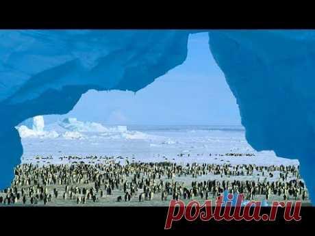 Застывшая тайна планеты - Антарктида - Документальный спецпроект - (17.06.2017)