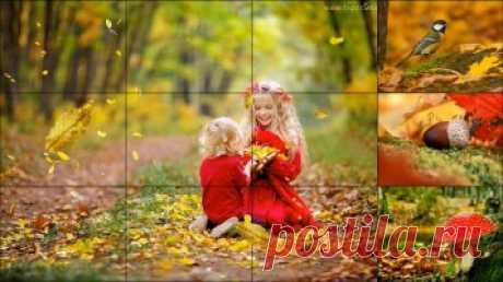 Текст песни - Осень в лесу - Детские видеоклипы
