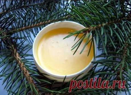 Масло и свежая хвоя от любой боли - Образованная Сова