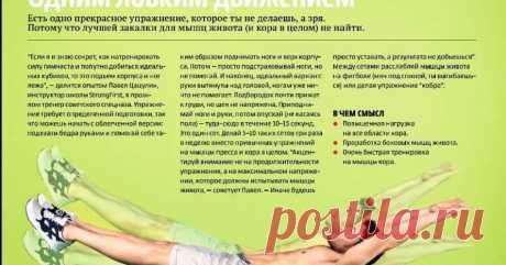 мышцы кора тренировка: 8 тыс изображений найдено в Яндекс.Картинках