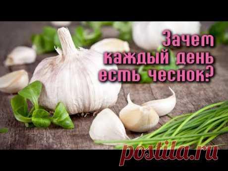 ЗАЧЕМ ЕСТЬ ЧЕСНОК КАЖДЫЙ ДЕНЬ?  А вы знаете, что полезные свойства чеснока не исчерпываются защитой от простуды? Каждый из нас по воле случая - хоть раз, но пробовал это специфическое растение — его белые зубчики отличаются резким ароматом, и внушительной жгучестью. Чеснок помогал нашим предкам сохранять сердце здоровым, а ум ясным. Поддерживал молодость и дарил бодрость. Можно петь дифирамбы чесноку часами, - но лучше испытать его чудотворную силу на себе!