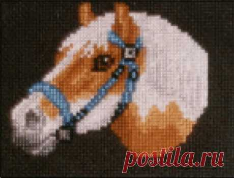 Pony counted cross-stitch chart   Etsy