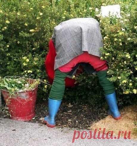 7 случаев, когда к изготовлению пугал на огороде люди подошли ну очень креативно   Неганов Дмитрий   Яндекс Дзен