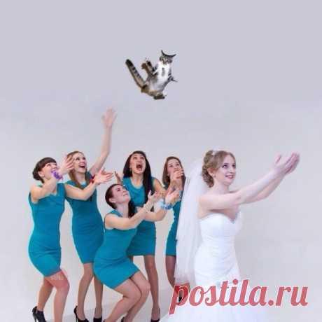 Свадьба сильной и независимой женщины  #юмор@parad_svadeb