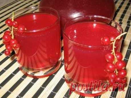 Домашнее вино: рецепт, проверенный временем 🚩 Винаа