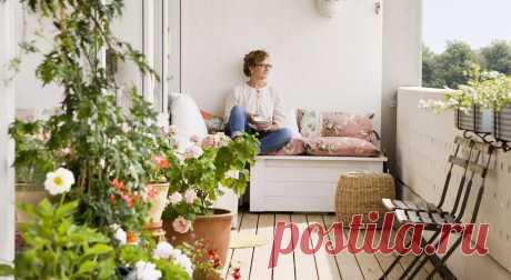 Какие цветы подходят для спальни, ванной, кухни, гостиной | Журнал Домашний очаг