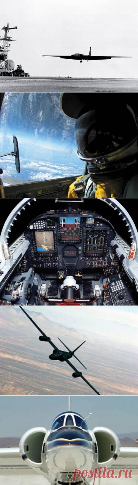 Легкокрылая леди-дракон: Легендарный самолет-шпион — Популярная механика