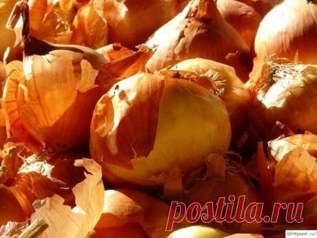 El pellejo de cebolla - el potosí para los veraneantes