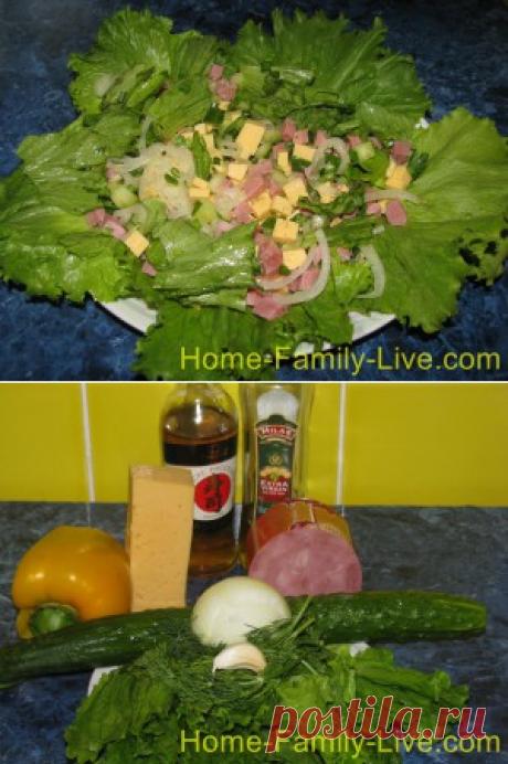 La ensalada con el jamón, el pepino y el queso - la receta con las fotorecetas de cocina