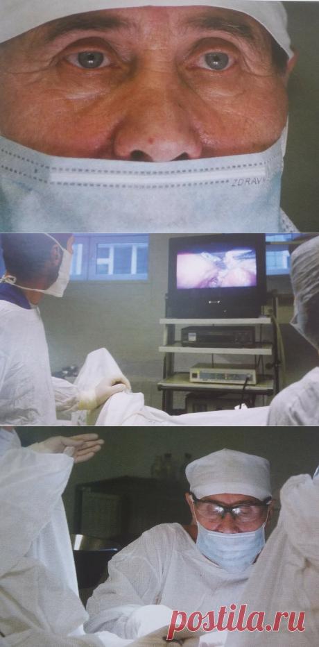 Гинеколог Галков закрепил в РКБ груздевский дух (перевез столетнюю пальму учителя). Он помог тысячам пациенток стать мамами | Mun Ira | Яндекс Дзен