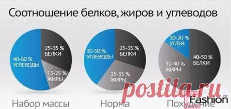 школа стройности по овсянникову подсчет белков: 8 тыс изображений найдено в Яндекс.Картинках