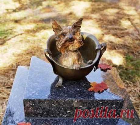 «Памятник посвящен Смоки и другим собакам всех войн»  Facebook