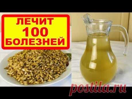 ОВЕС - ЛЕЧИТ 100 БОЛЕЗНЕЙ: печень, почки, бронхит, грипп, кашель, чистит кровь, укрепляет иммунитет