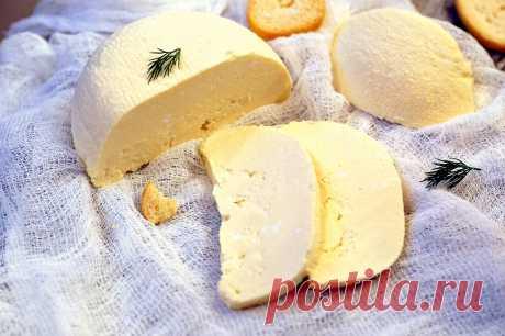 Я научилась готовить вкусный домашний сыр. - Рецепты для дома Время приготовления: 40 мин. + 4 часа на выдержку в холодеЭтот сыр очень хорошо подходит для завтраков. Его можно сделать на Ваш вкус, добавив любимые специи и травы на первом этапе. Сыр конечно отличается вкусом от привычного нам — магазинного, но не хуже. Просто он другой – домашний. А приготовить его совсем несложно. 600 мл […]