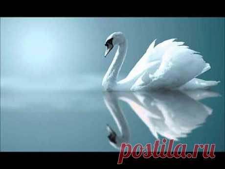 ▶ Красивая музыка - YouTube