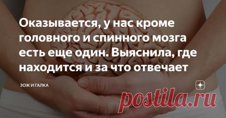 Оказывается, у нас кроме головного и спинного мозга есть еще один. Выяснила, где находится и за что отвечает Мы привыкли думать, что за всё у нас отвечает ЦНС. Но есть  у нас еще один мозг и не менее важный