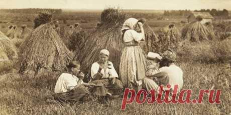 (+2) День насилия и верности : Психология : Мир женщины : Subscribe.Ru