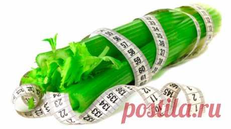Как похудеть с помощью сельдерея – Вкусные рецепты для всей семьи