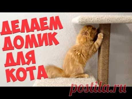 Как сделать домик для кота. Когтеточка своими руками