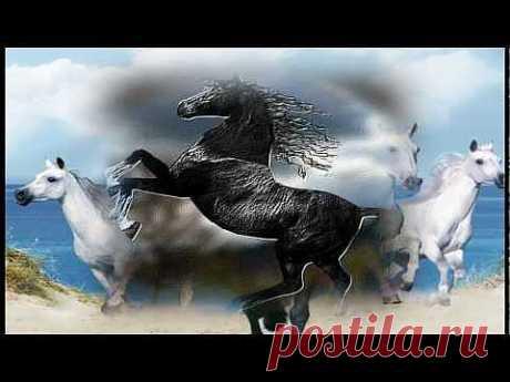 """▶ И.Штраус """"Радецкий марш"""" (Красивые лошади) - YouTube"""