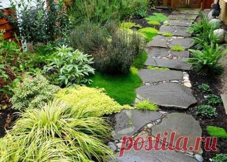 Идеи для садовых дорожек — Роскошь и уют