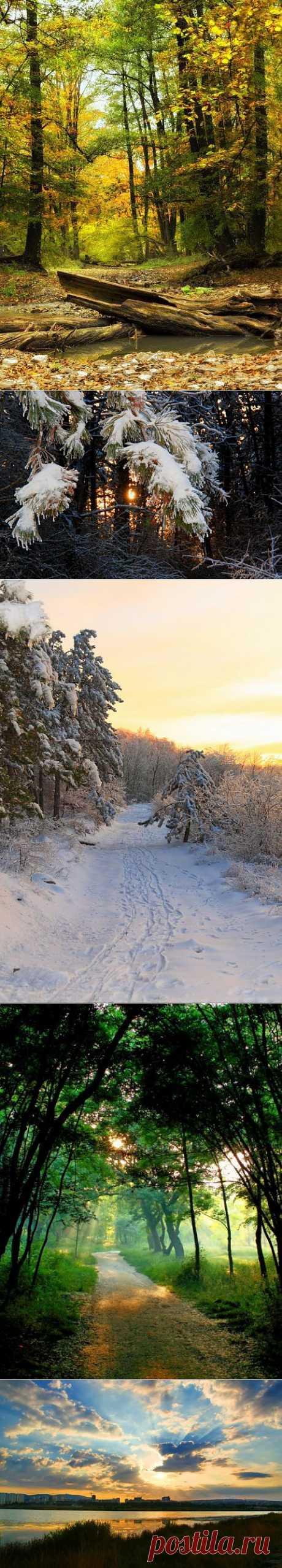 Seasons | Fotoiskusstvo
