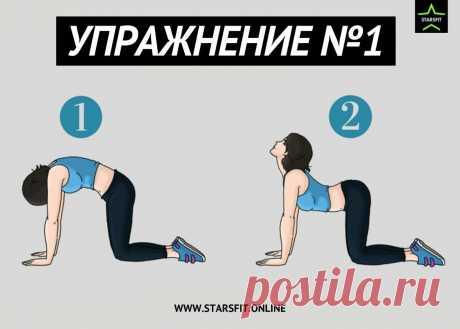 Болит поясница? Делай эти 7 упражнений для профилактики.   STARSFIT - здоровый образ жизни   Яндекс Дзен