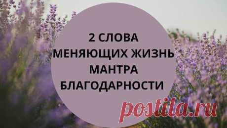 2 слова, меняющих жизнь. Мантра благодарности и принятия | Астролог Мария Кузьменко | Яндекс Дзен