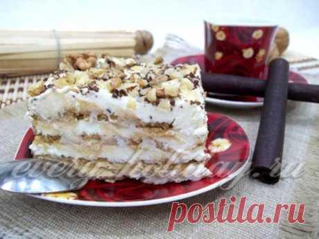 La torta de las galletas con el requesón y la crema agria sin cocción