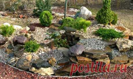 Устройство рокария своими руками: подбор растений, камней и цветов