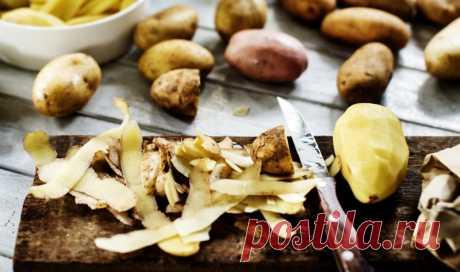Как использовать картофельные очистки Картофель — один из самых популярных продуктов на нашей кухне, мы поедаем его сотнями килограммов. А сколько же килограммов картофельной кожуры мы выбрасываем в мусорное ведро за год? Наверняка немало...