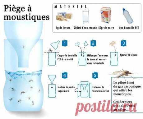 (+1) тема - Ловушка для комаров | Полезные советы