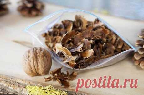 Чем полезна настойка из перегородок грецких орехов и как правильно ее приготовить | Мой сад и огород | Яндекс Дзен