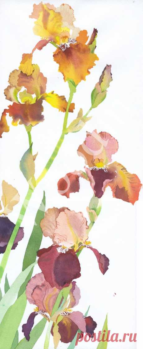 Mary Woodin: живопись