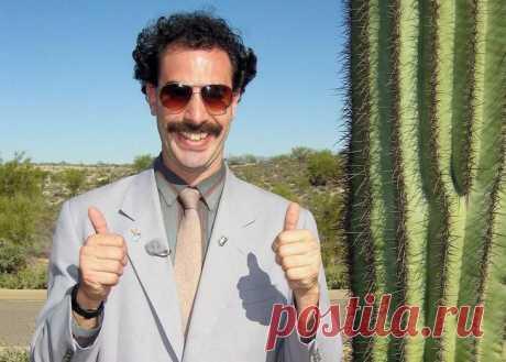 От Фриды Кало до Бората: 13 легендарных усов всех времен и народов Многие исторические личности навсегда закрепили в нашем сознании свой неповторимый образ, который не менялся десятилетиями. И одним из самых ключевых элементов их внешнего вида были именно усы.На перв...