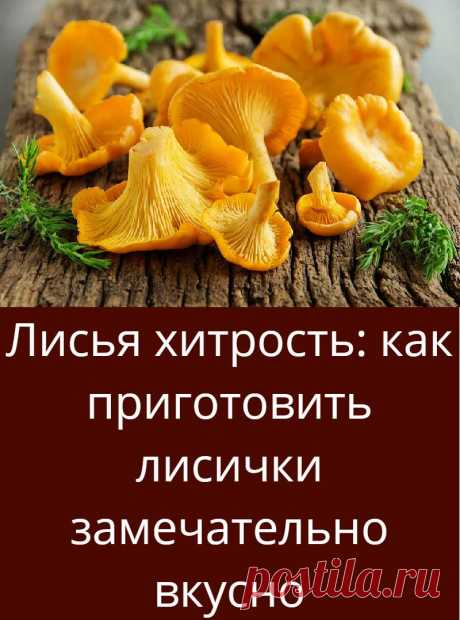 Лисья хитрость: как приготовить лисички замечательно вкусно